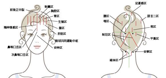 頭鍼(とうしん)