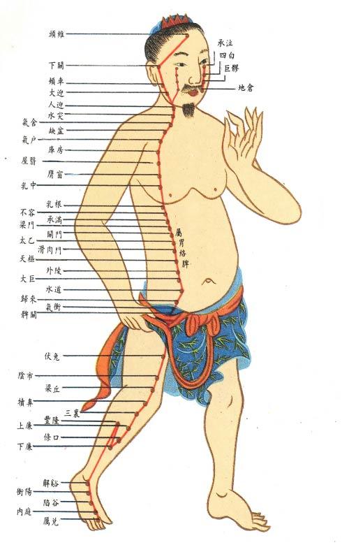 胃経(いけい)